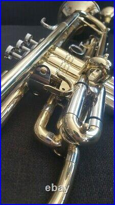 Berkeley 4th Rotary Valves F trumpet, Bb Double Bell, Piccolo Trumpet