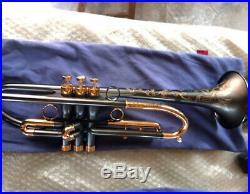 Customized Matt black nickel Trumpet Horn streamline WithCase