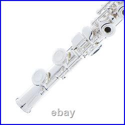 OPEN HOLE SILVER PLATED with Split E Italian Pads C FLUTE