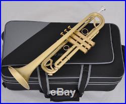 Professional Brushed Matt Brass Trumpet Monel Valves Bb Flat Horn With Case