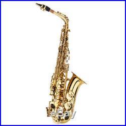Professional Saxophone Sax Eb Be Alto E Flat Brass with Case+Care Kit