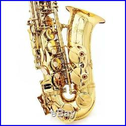 Professional Saxophone Sax Eb Be Alto E Flat Brass with Case+Care Kit N6J6