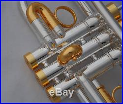 Professional silver Eb/D key trumpet monel valves horn gold tuningpipe with case